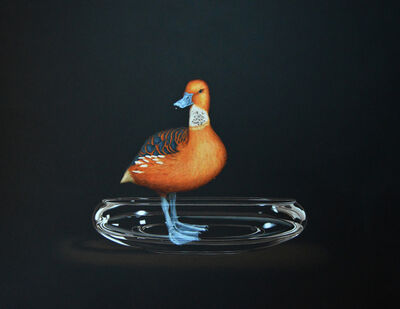 Isabelle du Toit, 'Fulvous Whistling Duck ', 2016