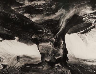 Wynn Bullock, 'Tree Trunk', 1971