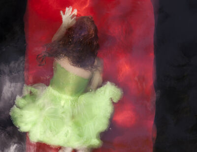 Barbara Cole, 'Green Chartreuse on Red Field II, from Chromatics', 2010