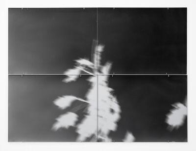 Giorgio Andreotta Calò, 'Untitled', 2012