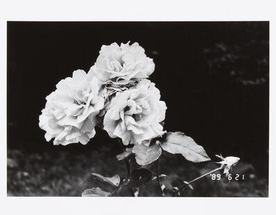 Nobuyoshi Araki, 'The First Year of Heisei', 1990 / 2013