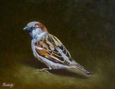 Henry Buerckholtz, 'Sparrow Study #6', 2020