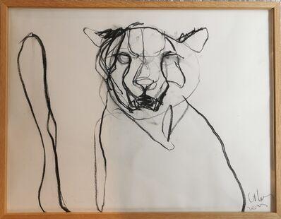 Patrick Villas, 'Sans titre', 2013