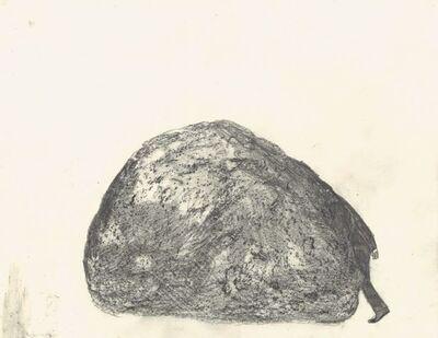 Klara Kristalova, 'study of a disappearance', 1999