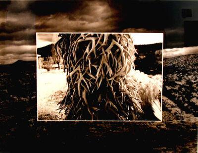 Meridel Rubenstein, 'Penitente', 1987