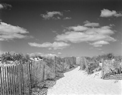 Daniel Jones, 'Beach Fence #6'