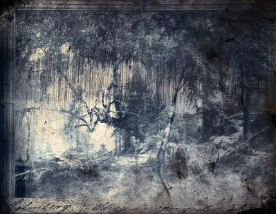 Jorma Puranen, 'Forest in Rain', 2015