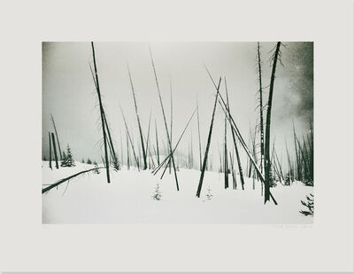 Nicola Green, 'Spires', 2017
