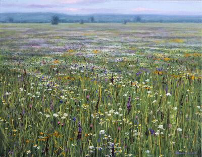 Ciba Karisik, 'Field At Dusk', 2020