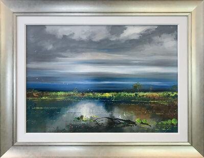 Colin Parker, 'Wetlands Colour'