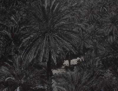Saad Qureshi, 'Sacred Garden III (Detail View)', 2017