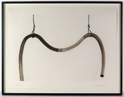 Zhang Enli 张恩利, 'Iron wire and pipe', 2013