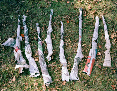 McNair Evans, 'Gun Collection', 2010
