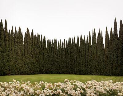 Brad Moore, 'Rose Room, Tustin, California', 2008