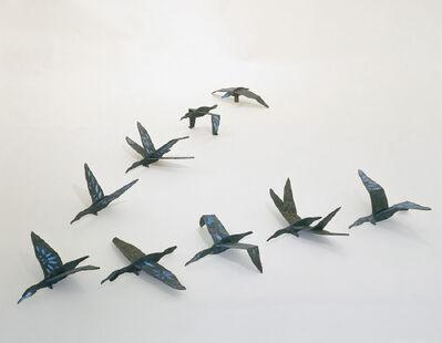 Andy Ouchi, 'Brandts Cormorant, Open Ocean', 2006