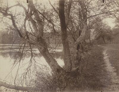 Eugène Atget, ''Etang - Ville d'Avray'', 1923
