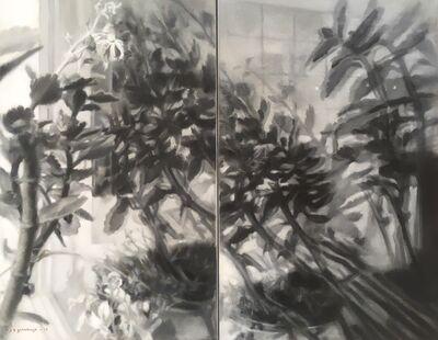 Jaco van Schalkwyk, 'Meinersen Künstlerhaus: Reflection Study I', 2017