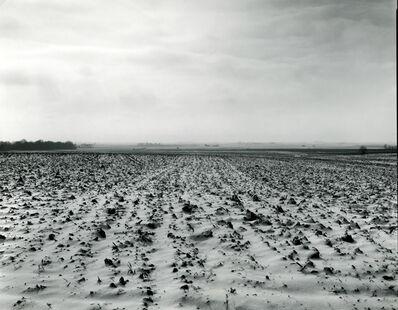 Rhondal McKinney, 'untitled, Illinois Landscape', 2005