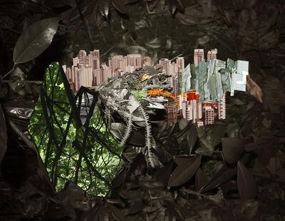 Caio Reisewitz, 'avanhandava', 2015