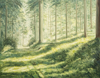 Bernard Ammerer, 'Forest Road', 2019