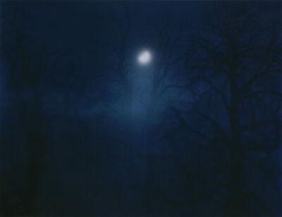Nicholas Hughes, 'In Darkness Visible [Verse I] no. 12', 2007