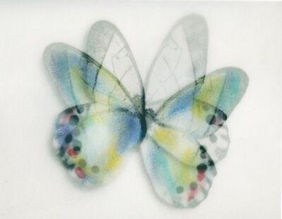 Stefania Ricci, 'Butterfly 020', 2013