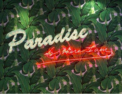 Olivia Steele, 'Paradise is where I am'