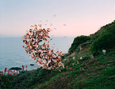 Thomas Jackson (b.1971), 'Lusty Wives Vol. #81, Muir Beach, California', 2015