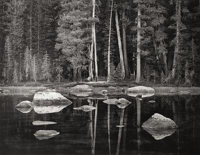 John Sexton, 'White Boulders and Forest, Dawn, Yosemite National Park, California', 2003
