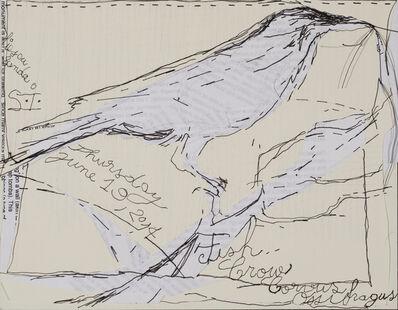 Sanda Iliescu, 'Fish Crow, Corvus Ossifragus', 2014