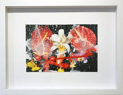 Marc Quinn, 'Untitled 187', 2012