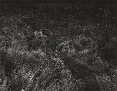 Harry Callahan, 'Aix-en-Provence', 1957