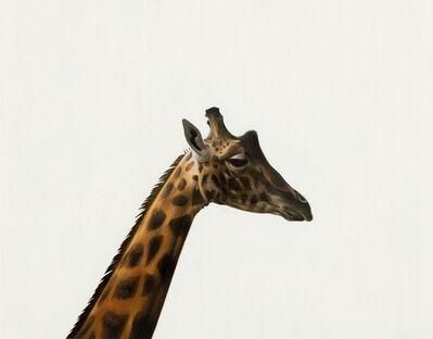 Andrew Grassie, 'Giraffe', 2020