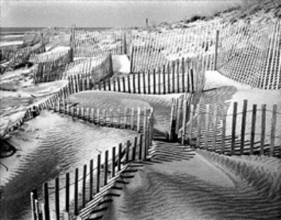 Daniel Jones, 'Beach Fence #1'