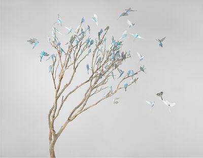 Leila Jeffreys, 'Blue Blossoms', 2019