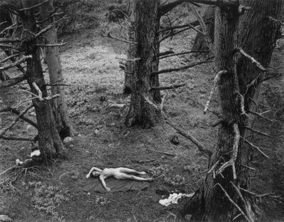 Wynn Bullock, 'Woman and Dog in Forest', 1953