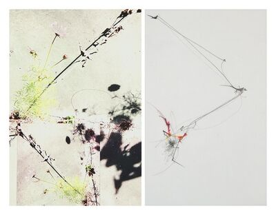 Sandi Haber Fifield, 'Untitled (LF17 #154)', 2017