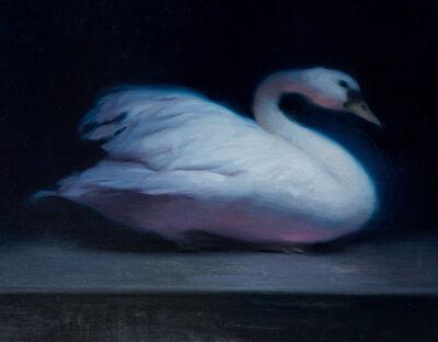 Stephen Bauman, 'Swan', 2018