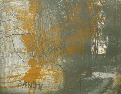 Ken Denning, 'Forêt V', 2007