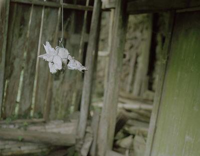 Guozhu Guo, 'Lingering Garden No.82|120°56′E    28°3′N', 2017