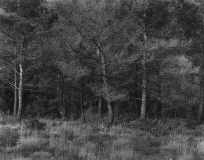 Harry Callahan, 'Aix-en-Provence, France', 1957