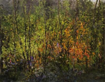 Judy Cheng, 'Landscape I', 2019