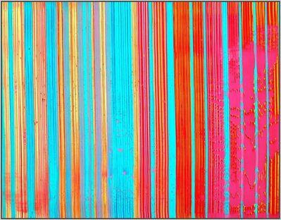 Juliana Do, 'Rainbow Body I', 2017
