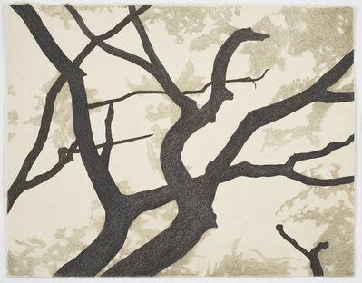 Cameron Martin, 'Untitled', 2004