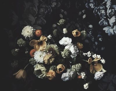 Ashley Woodson Bailey, 'The Calm Before The Storm', 2017