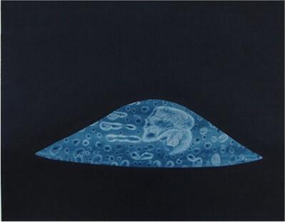 Carla Fache, 'origenes', 2011