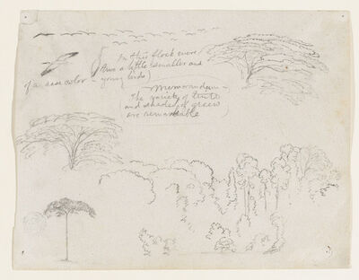 Frederic Edwin Church, 'Sketches from South America, probably from Colombia', 1853