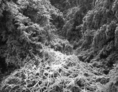 Daniel Coburn, 'Ice Fortress', 2014