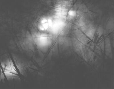 Michael Flomen, 'Nuit Magique', 2002