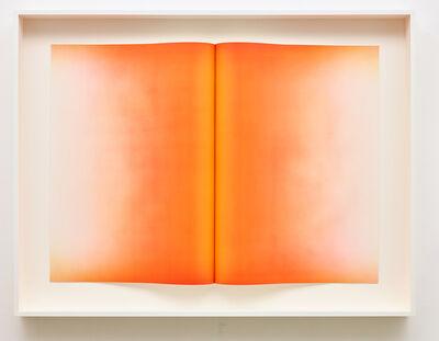 Anish Kapoor, 'Fold VI', 2016